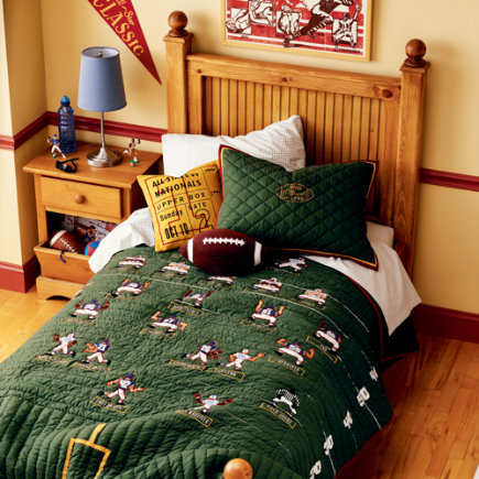 Stylish modern bedroom for Boys with sport theme bed