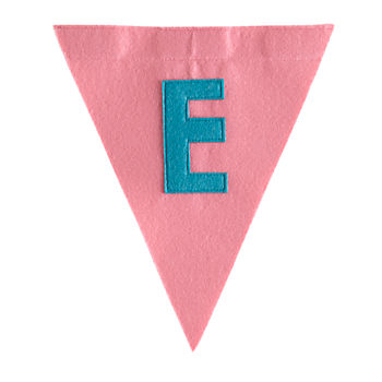 E Print Neatly Pennant Flag (Girl)