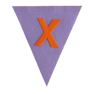X Print Neatly Pennant Flag (Girl)