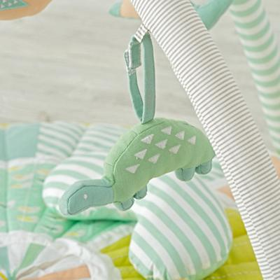 Baby_Blooming_Activity_Mat_Details_V1