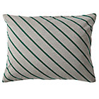 Green Stripe Little Prints Sham