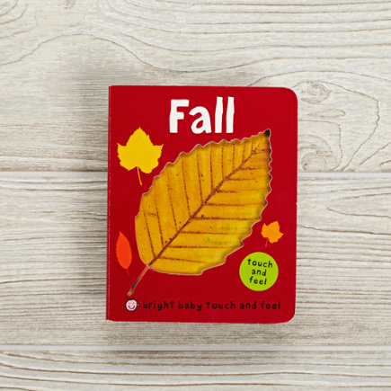 Fall Childrens Book - Fall