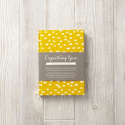 Expecting You: A Keepsake Pregnancy Journal - Expecting You: A Keepsake Pregnancy Journal