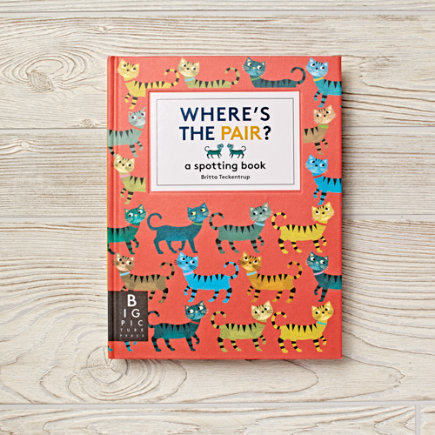 Wheres The Pair Childrens Book - Wheres The Pair?