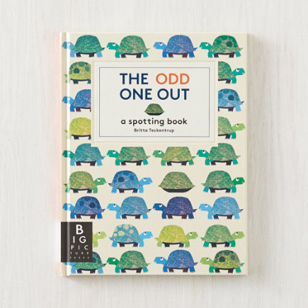 The Odd One Out Childrens Book - The Odd One Out by Britta Teckentrup
