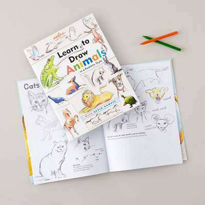 Learn to Draw Animals Book