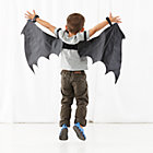 Bat Wild Wings Dress Up Set