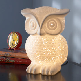 Nocturnal Owl Nightlight