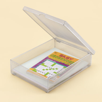Kids Desk Accessories: Kids Silver Mesh Storage Boxes - Silver Hinged Paper Box