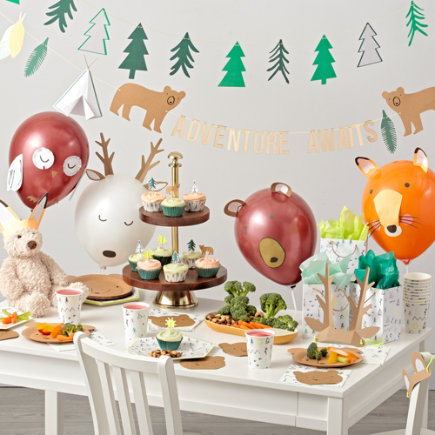 Camping Birthday Party Decorations - Lets Explore Large Plates (set Of 12)