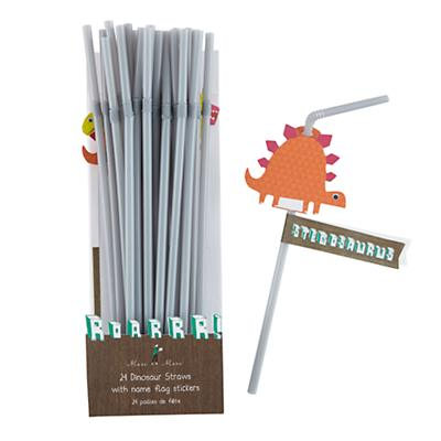 Roarrrr! Party Straws (Set of 24)