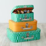 Bon Voyage Suitcase Set (Green Pattern)