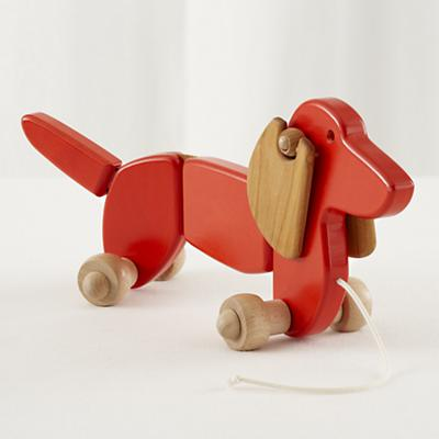 Walk the Dog Pull Toy