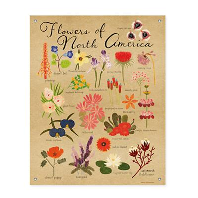 Flowers of North America Banner