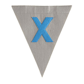 X Print Neatly Pennant Flag (Boy)
