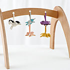 Set Natural Activity Gym With 5 Animal Rattles