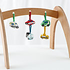 Set Natural Activity Gym With 5 Car Rattles