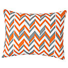 Orange Zig Zag Little Prints Sham