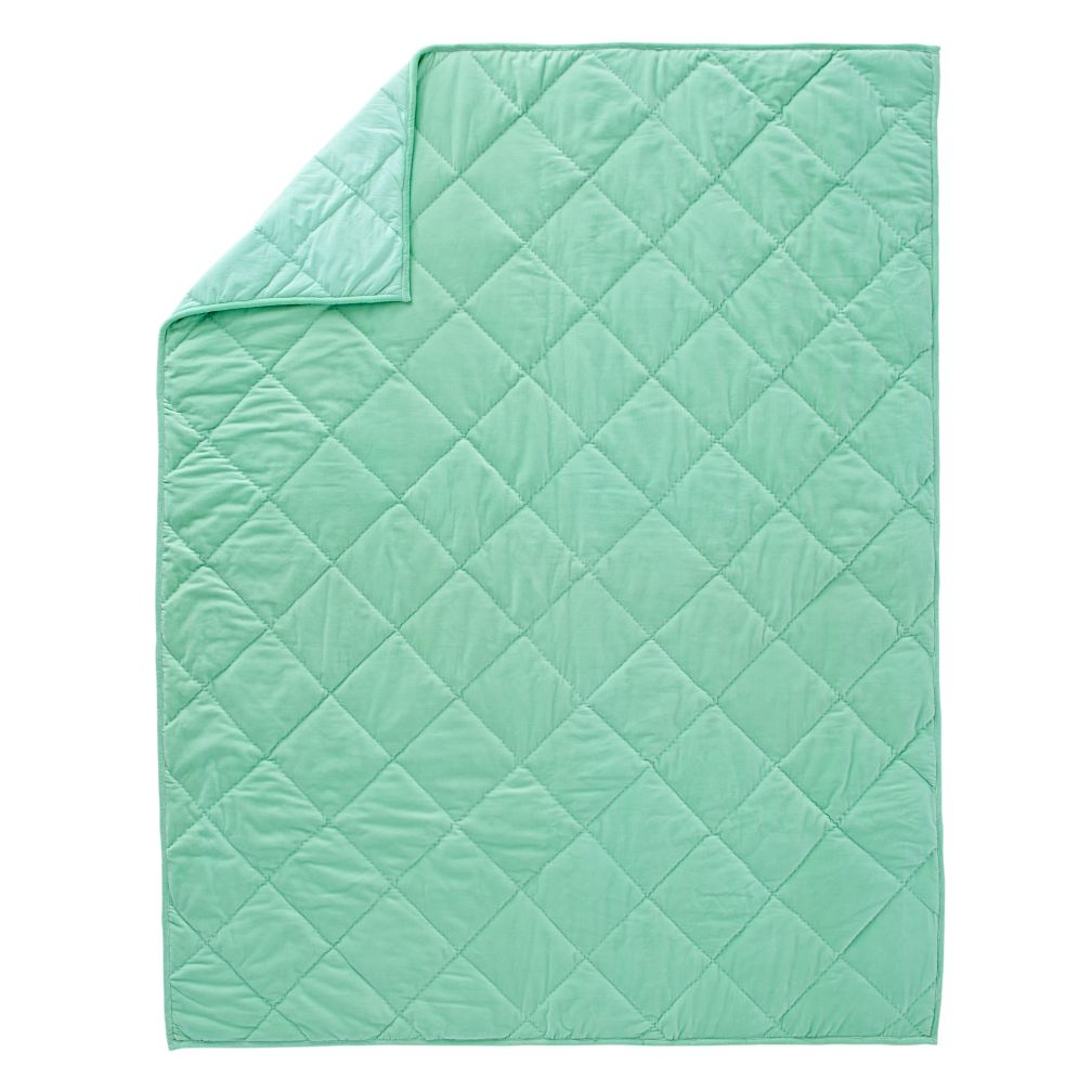 Snug as a Bug Mint Twin Quilt