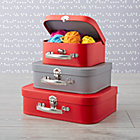 Bon Voyage Red and Grey Suitcase Set