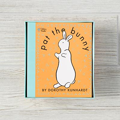 Book_Pat_The_Bunny_V1