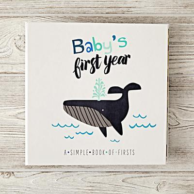 Childrens_Books_Babys_First_Year_Blue