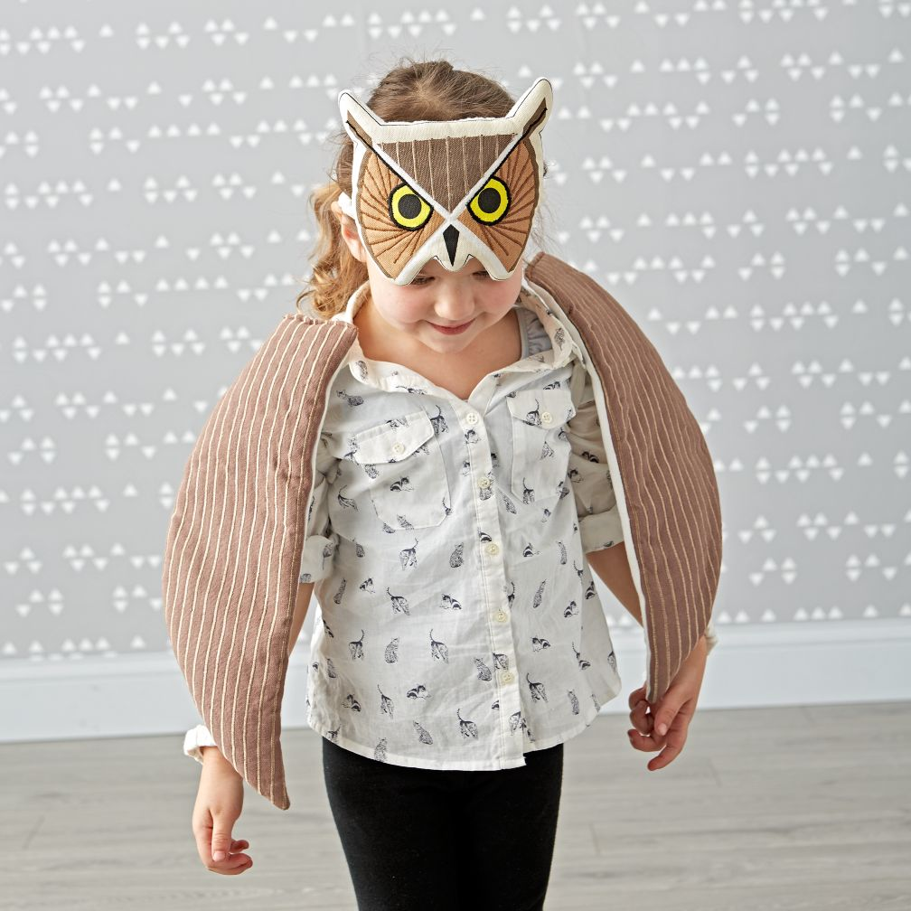 Charley Harper Owl Dress-Up