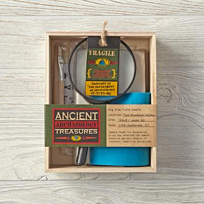 Ancient Treasure Archaeology Kit
