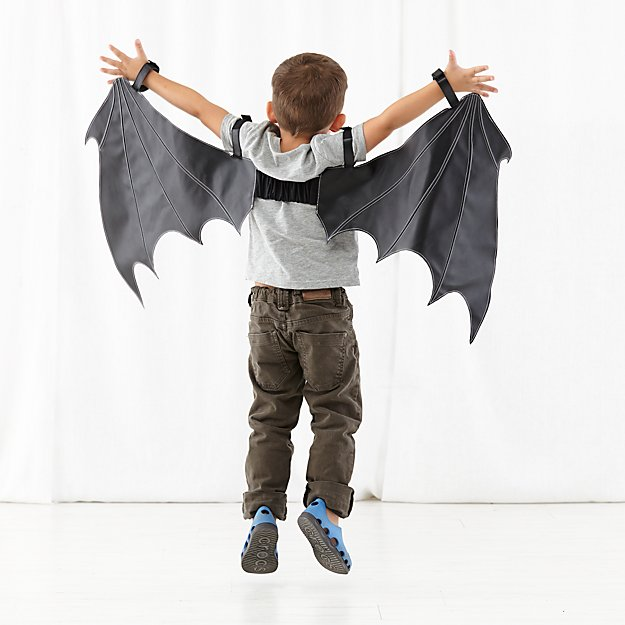 Wild Wings Dress Up Set (Bat)