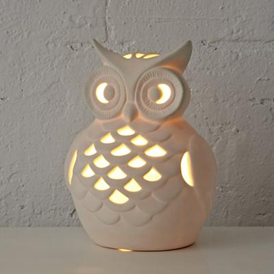 Nightlight_Wide_Eyed_Owl_ON_r