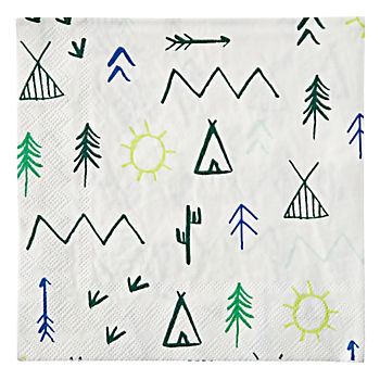 Let's Explore Large Napkins (Set of 20)