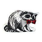 Pillow_Wandawega_Raccoon