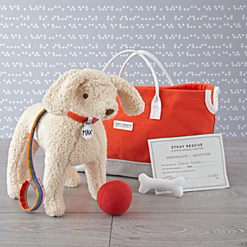 Goldendoodle Stuffed Animal Adoption Set