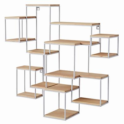 Shelf_Rack_Network_LL