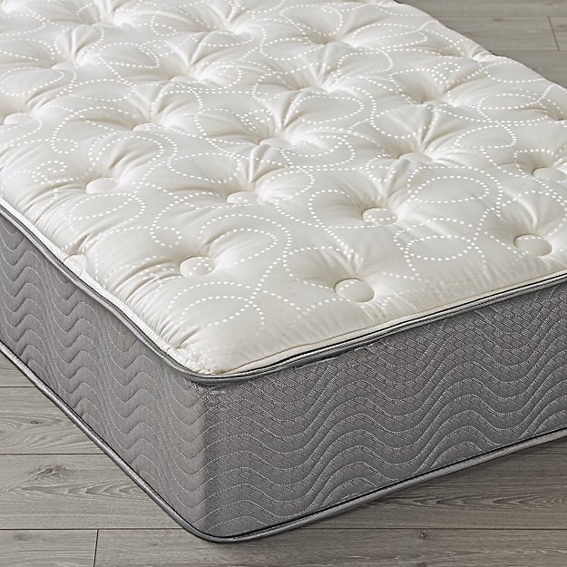 Simmons Beautysleep Plush Twin Mattress The Land Of Nod