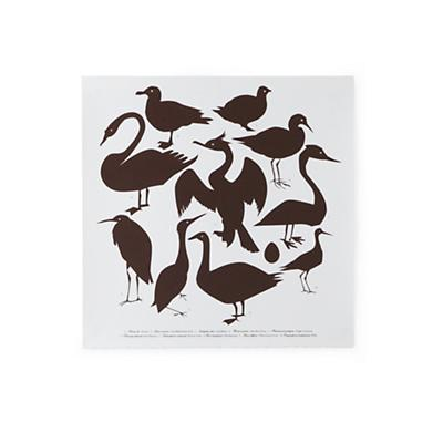 Waterbirds Wall Art