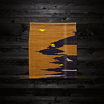 Hide and Seek Weaving by Dee Clements and Michelle Kohanzo